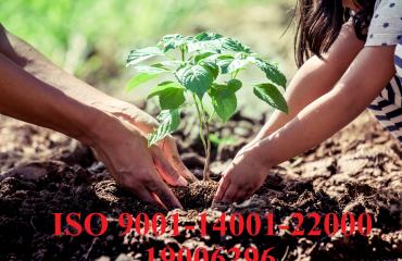 Dịch vụ tư vấn ISO