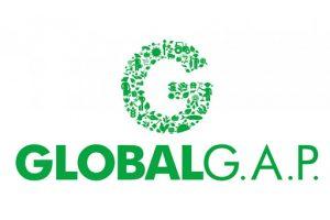 chung nhan global Gap