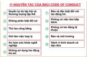 chung nhan BSCI cho doanh nghiep
